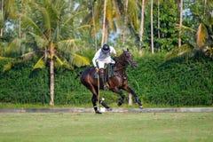 El uso del jugador de polo un mazo golpeó la bola en el torneo Foto de archivo libre de regalías