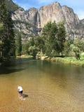 El vadear en el río de Merced en Yosemite Fotografía de archivo libre de regalías