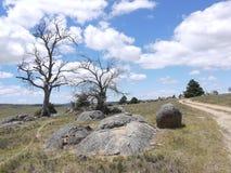 El valle cerca de Cooma en Victoria en Australia Foto de archivo