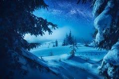 El valle cubierto con nieve fresca en una luz de la luna Imagen de archivo