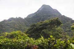 EL Valle de Anton del Panama Fotografia Stock