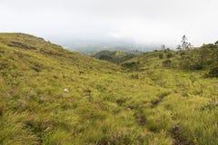 EL Valle de Anton du Panama Images stock