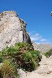 El valle de Boquer, Majorca Fotos de archivo libres de regalías