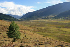 El valle de Phojika - Bhután Imagen de archivo libre de regalías