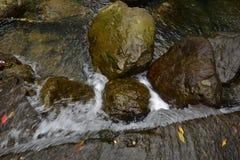 El valle se cose con las pequeñas corrientes del agua Fotos de archivo libres de regalías