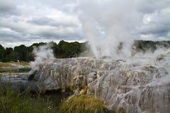 el valle termal de Whakarewarewa - Te Puia Foto de archivo
