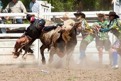 El vaquero se cae de toro peligroso Imagen de archivo libre de regalías
