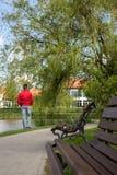 El varón adulto en parque mira en el lago imagen de archivo