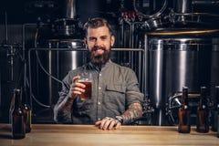 El varón tatuado con la barba y el pelo elegantes sostiene la pinta de cerveza del arte que se sienta en el contador de la barra  imagen de archivo