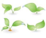 El vector cuatro ambiental canta Foto de archivo libre de regalías