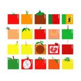 El vector da fruto colección Imagen de archivo libre de regalías