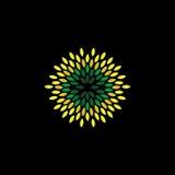 El vector del estilo de la flor del verde deja iconos arreglados como círculo - e Imagen de archivo