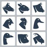 El vector domesticó los iconos de los animales fijados ilustración del vector