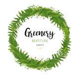 El vector floral invita a la tarjeta con las hojas verdes del helecho del eucalipto, ele Fotos de archivo