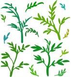 El vector hojea modelo de las siluetas Diversos tintes del verde ilustración del vector