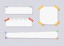 El vector rasgado afila las hojas de papel, etiquetas engomadas atadas de la nota, ejemplos fijados stock de ilustración