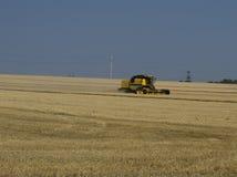 El vehículo de la granja cosecha la cosecha del trigo Fotografía de archivo