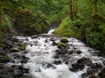 El velo nupcial baja cascada de Oregon de la cascada Imagen de archivo