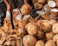 El vendedor abre los cocos tropicales Fotos de archivo libres de regalías
