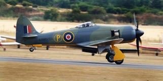 El vendedor ambulante Sea Fury es un avión de combate británico diseñado y manufacturado por el vendedor ambulante imagen de archivo