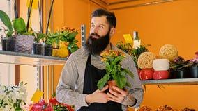 El vendedor barbudo de la flor sostiene las flores en un pote en un jardín marcha imagen de archivo