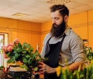 El vendedor elegante barbudo de la flor sostiene rosas rosadas en un mercado s fotografía de archivo