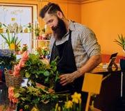 El vendedor elegante barbudo de la flor sostiene rosas rosadas en un mercado s fotos de archivo