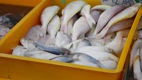 El vendedor pone pescados de mar frescos en escaparate con en hielo en el mercado asiático de la calle 4K almacen de metraje de vídeo