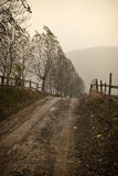 El venir del invierno Fotografía de archivo