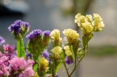 El verano amarillo, rosado, púrpura florece en el primer del ramo fotos de archivo