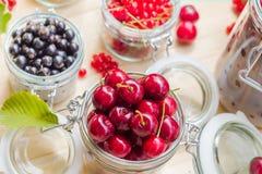 El verano de la visión superior da fruto el preservar preparado Foto de archivo libre de regalías