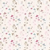 El verano florece algodón Imagen de archivo libre de regalías