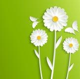 El verano florece con las mariposas en un fondo verde claro Foto de archivo libre de regalías