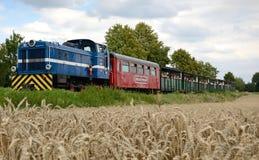 El verano que viaja por estrecho-calibra el tren ferroviario Imágenes de archivo libres de regalías