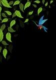 El verde abstracto deja el fondo Fotografía de archivo libre de regalías
