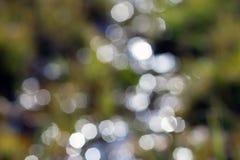 El verde abstracto del bokeh circunda el fondo Foto de archivo
