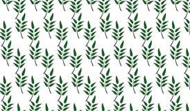 El verde abstracto moderno simple deja el modelo Imagen de archivo