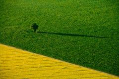 El verde coloca la visión aérea con el camino Imagenes de archivo