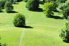El verde de Forest Field Grassy Summer Day florece la montaña que camina el Exp imagen de archivo
