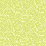 El verde de lite del vector deja el fondo inconsútil del modelo Perfeccione para la tela, scrapbooking, los proyectos del papel p libre illustration