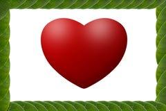 El verde deja el marco en forma de corazón Imagen de archivo libre de regalías