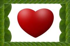 El verde deja el marco en forma de corazón Imágenes de archivo libres de regalías