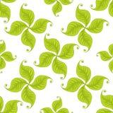 El verde deja el modelo inconsútil Diseño del vector Foto de archivo libre de regalías