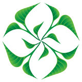 El verde deja insignia Fotografía de archivo