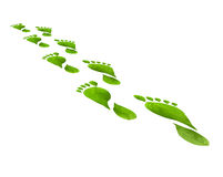 El verde deja pasos del pie aislados sobre el fondo blanco Imagenes de archivo