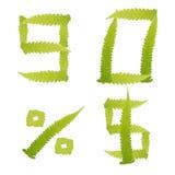 El verde del número deja el helecho aislado Foto de archivo libre de regalías