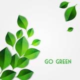 El verde del resorte deja el fondo Va el concepto verde Imágenes de archivo libres de regalías