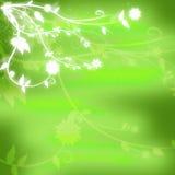 El verde original texturizó el fondo con las flores blancas que brillaban intensamente en la esquina Imagenes de archivo