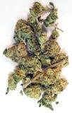 El verde quebrado florece al médico natural de Cannibis de las flores de la planta de marijuana Fotografía de archivo