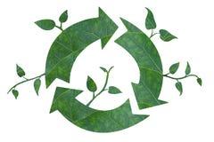El verde recicla ilustración del vector